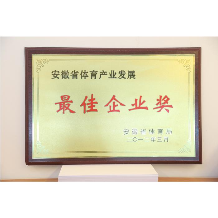 Best Enterprise Award