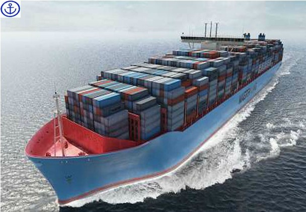 export, custom clearance logistics service