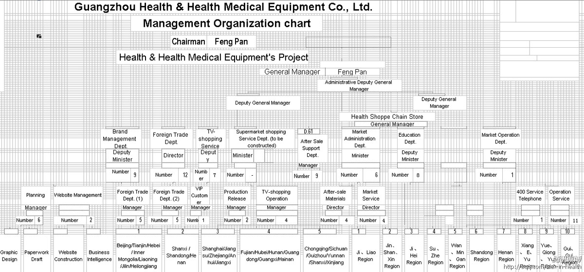 CompanyS Organization Chart  Guangzhou Health  Health Medical