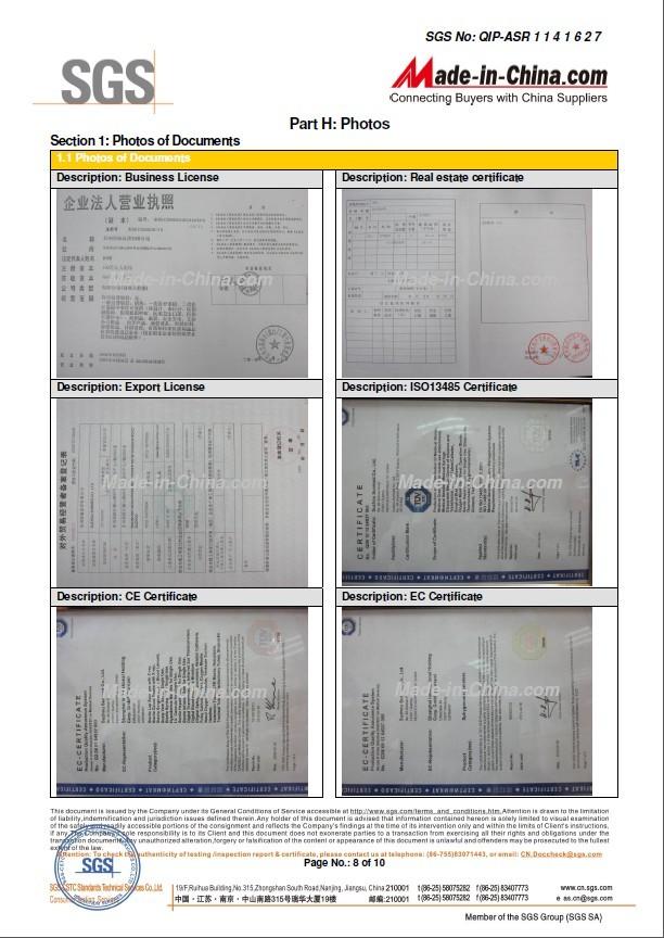 SGS Audit Report-8
