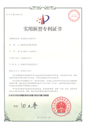 Letter of Patent 1