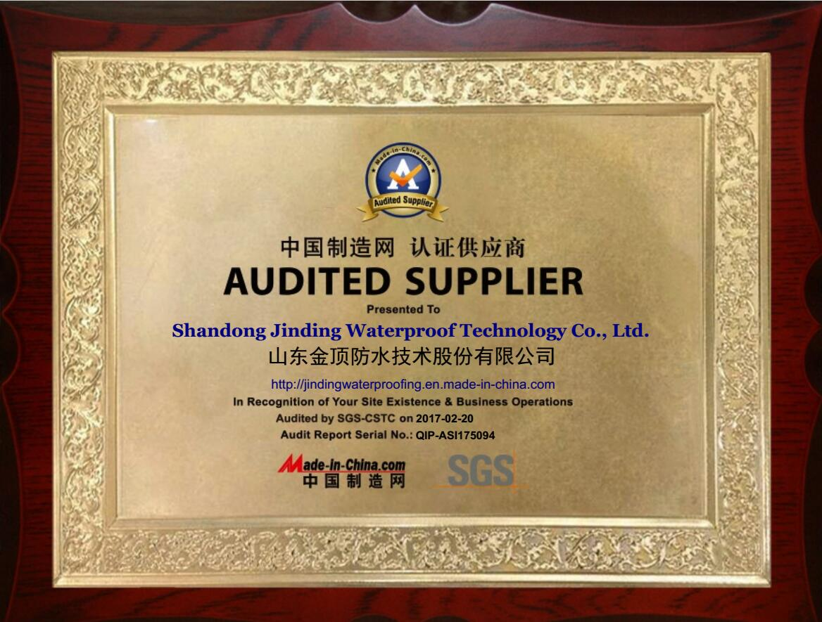 AUDITED SUPPLIER FROM MADE IN CHINA