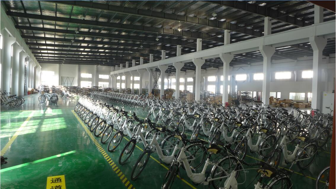 Electric bike workshop