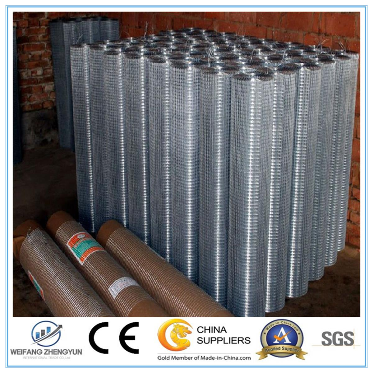 Best Selling Products in Europe Galvanized Welded Wire Mesh