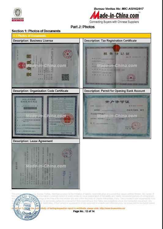 BV audit report