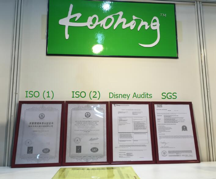 Disney Audits