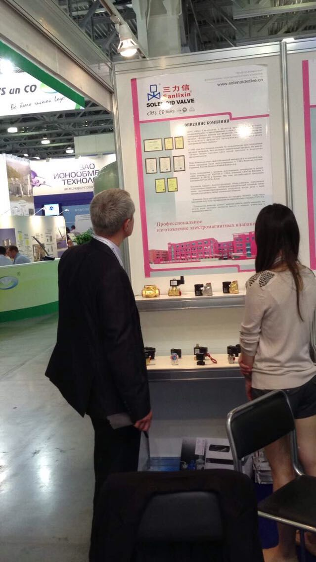 2014 in Russia exhibition show