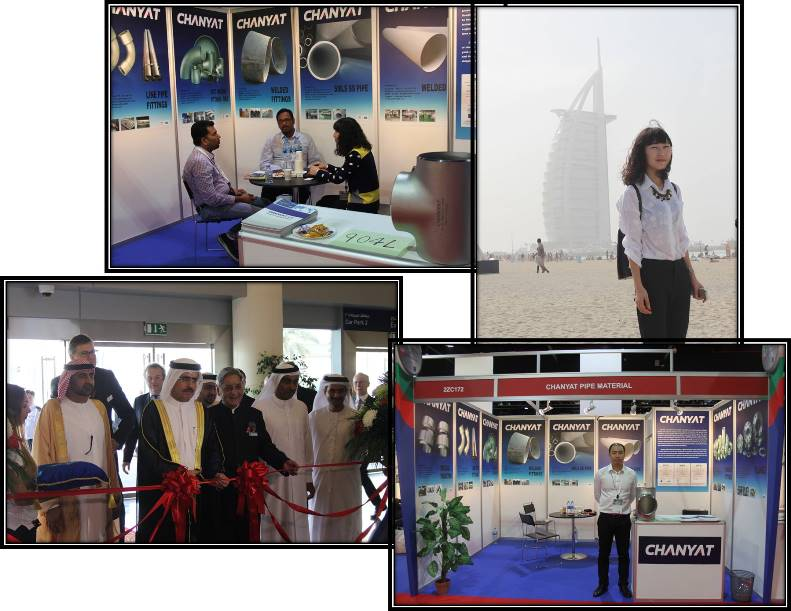 Dubai Exhibition