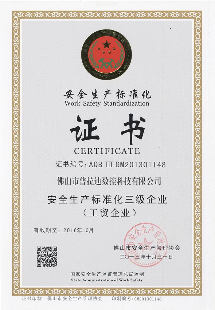 Work Safety Strandardization Certificate