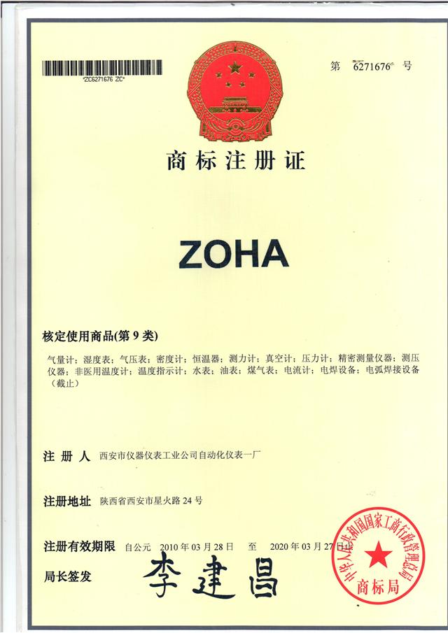 trade mark license