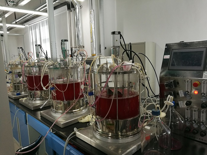 20L /40L cell bioreactor in CHINA