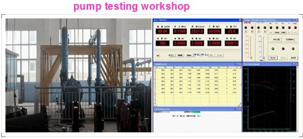 Pump Testing Workshop