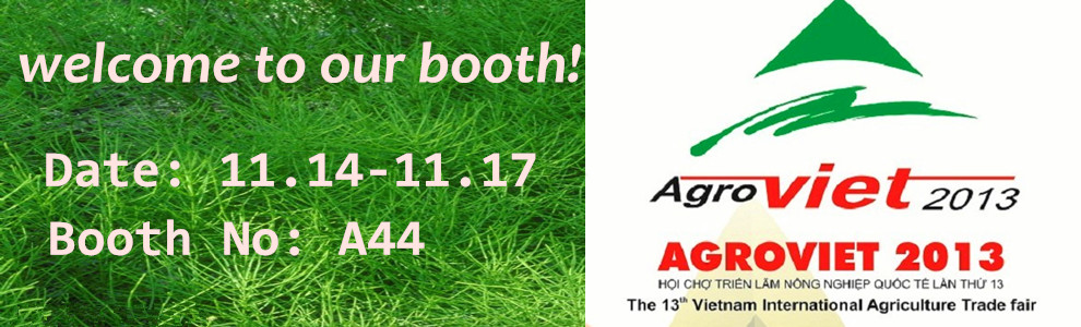 Agroviet 2013, welcome to our booth!