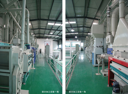 Our 150tons/D rice mill machine in GuiZhou