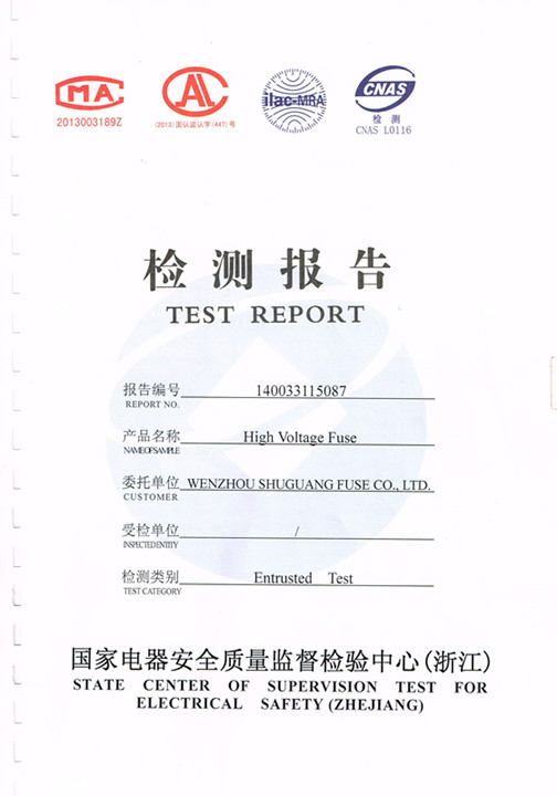 fuse link test report