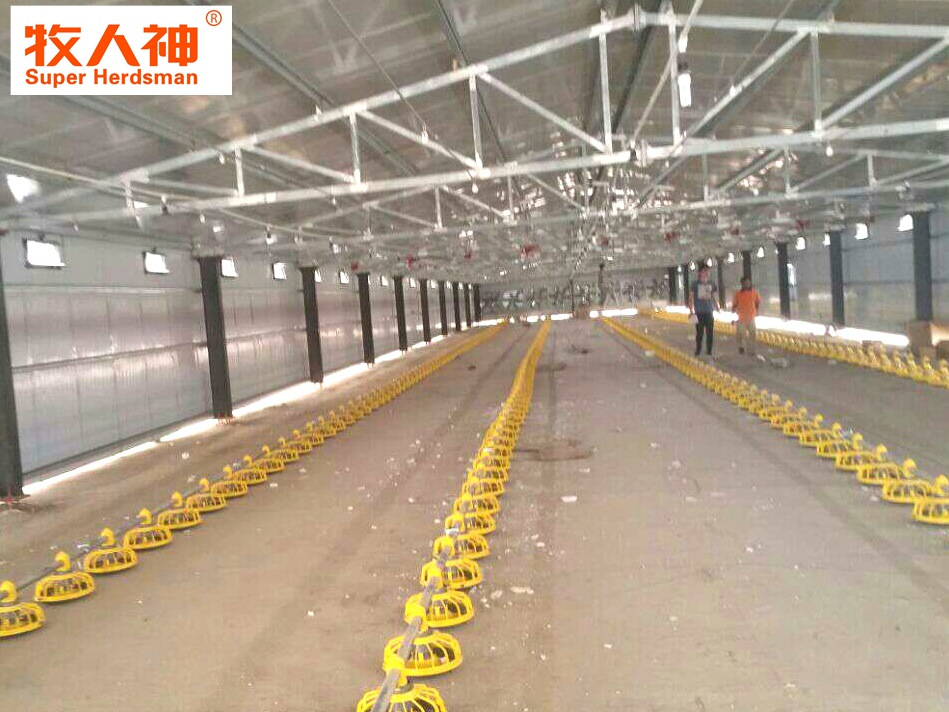 Broiler production project in Oman