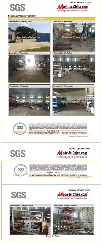 SGS. Report--Industrial Information