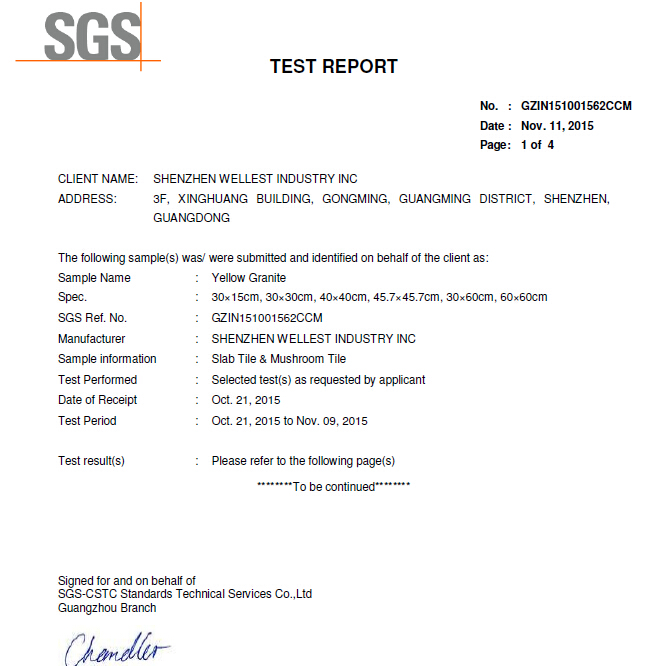 Testing Report