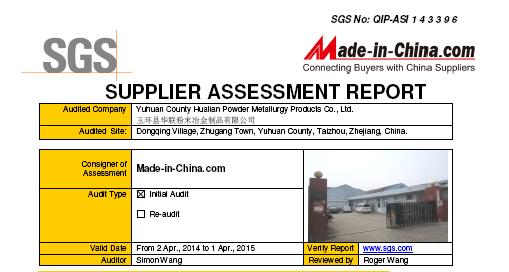 SGS Report2