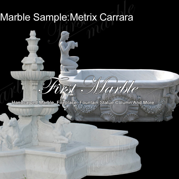 Marble Sample Metrix Carrara