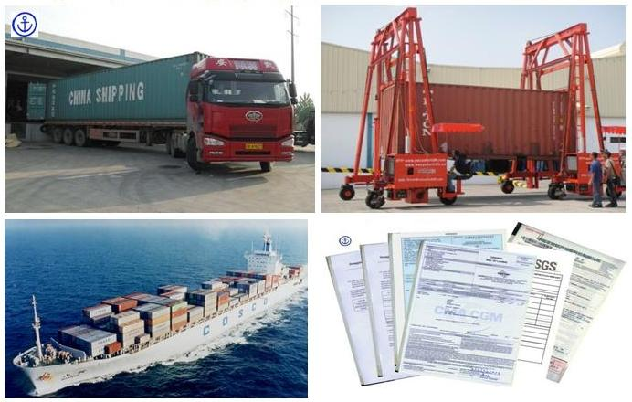 professional freight fowarder from china to asia