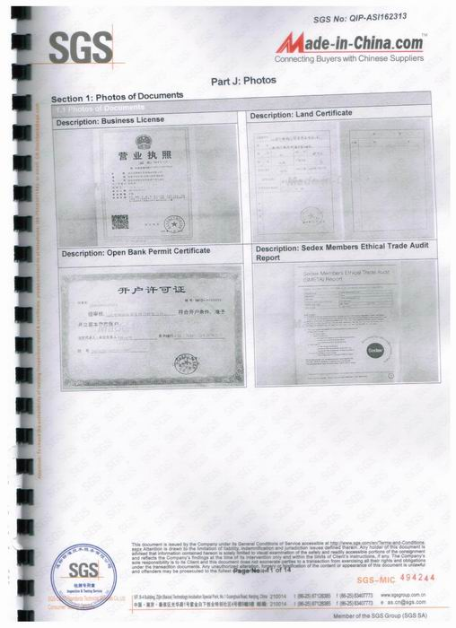 SGS audit report-11