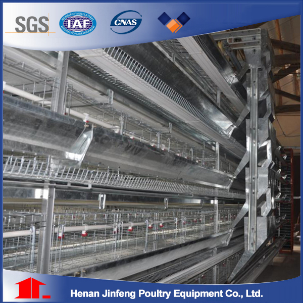 H type automatic chicken cage