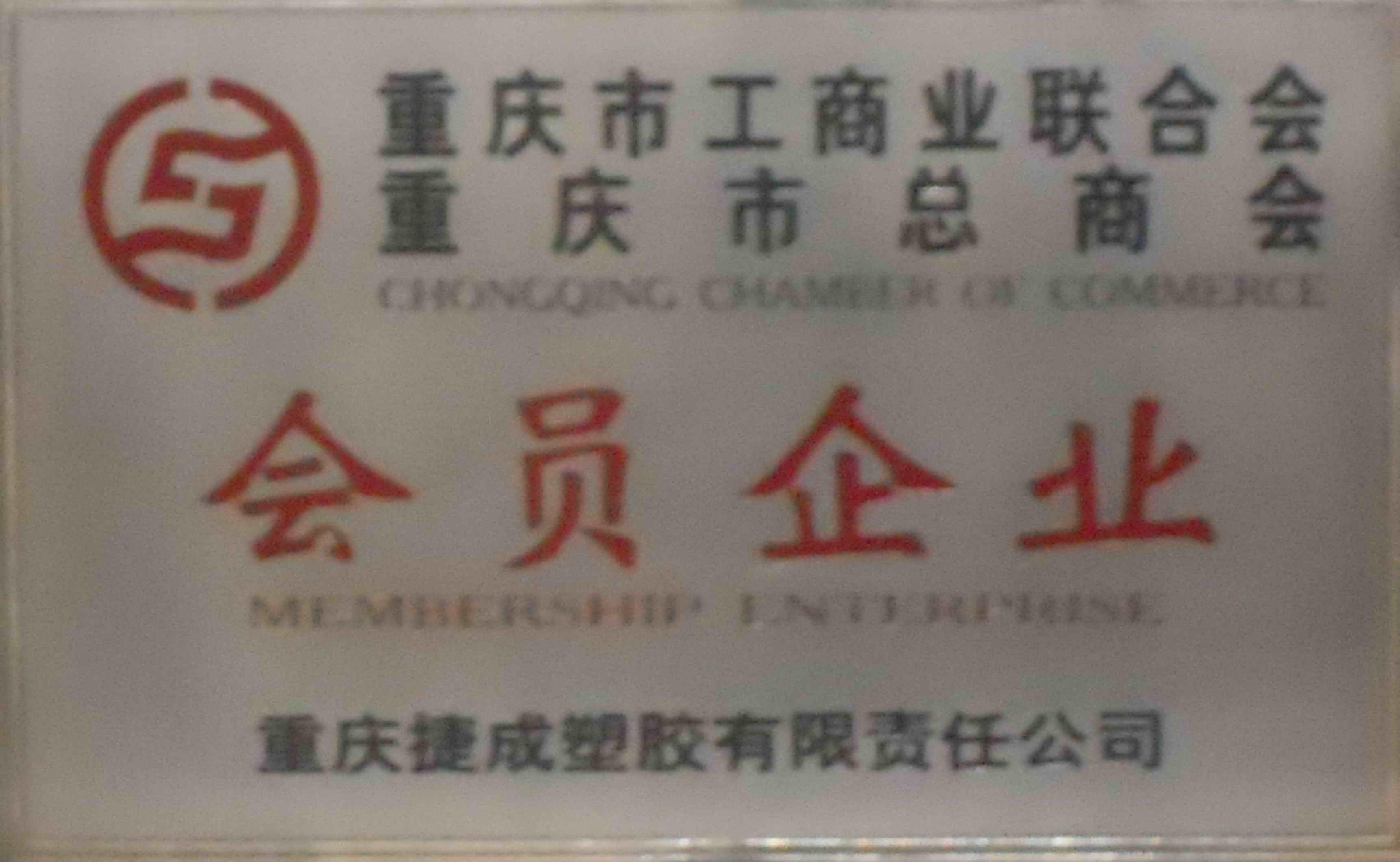 Chongqing Chamber of Commerce Memeber