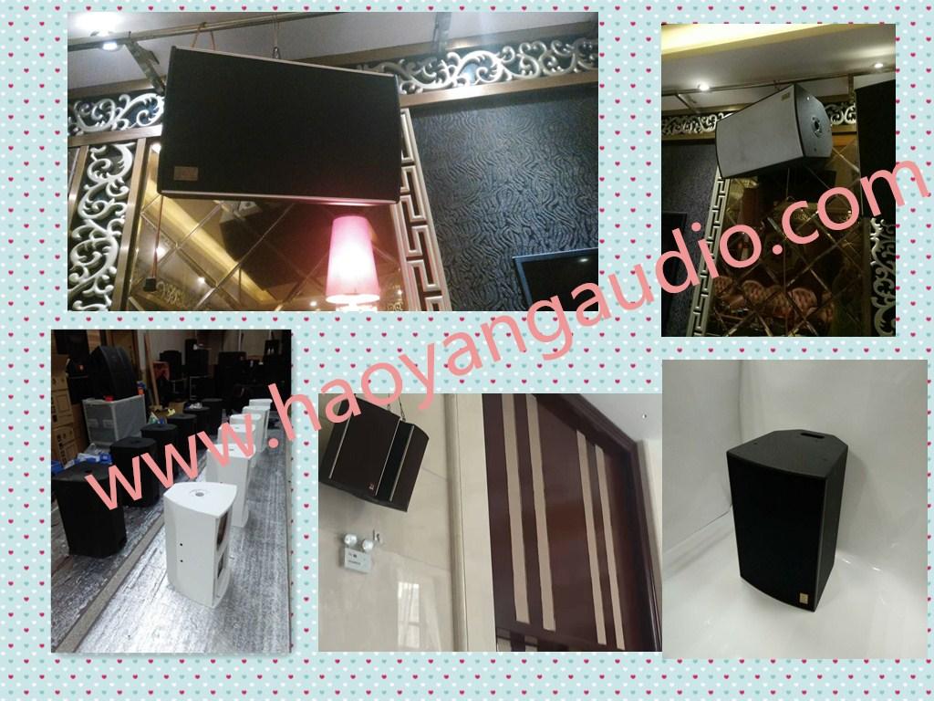 Hot Sale RM12 Single 12 Inch KTV Speaker