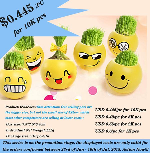 DIY Promotion Bottom Price Mini Garden Magic Cartoon Grass Hair and Head Toy Face Grass