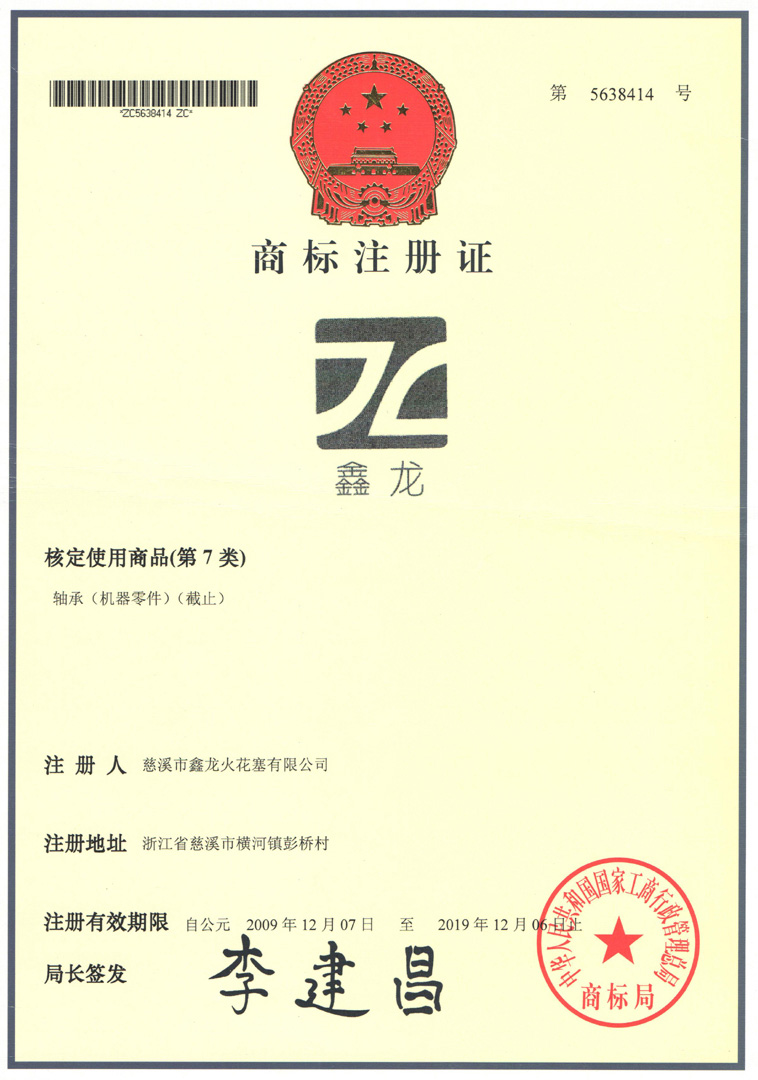 Xinlong Brand