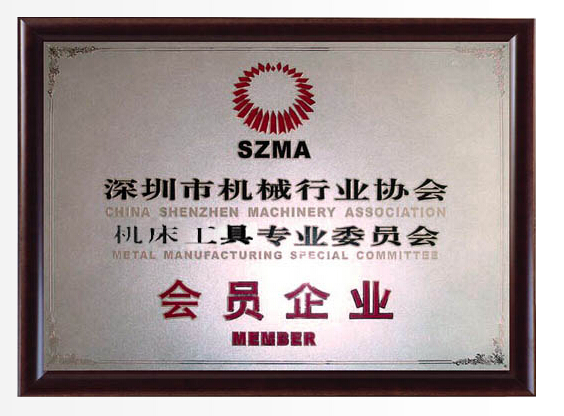 Member of Association Metal Manufacturing Special Committee