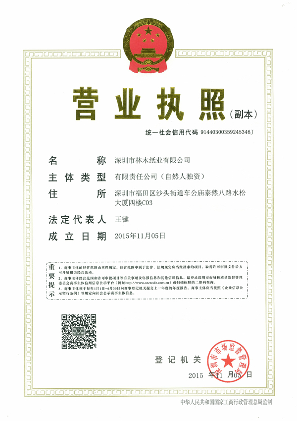 Shenzhen company business licence