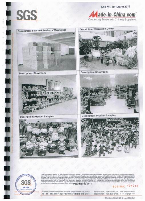 SGS audit report-13