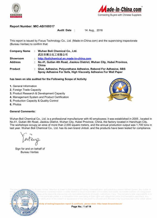 BV factory audit report
