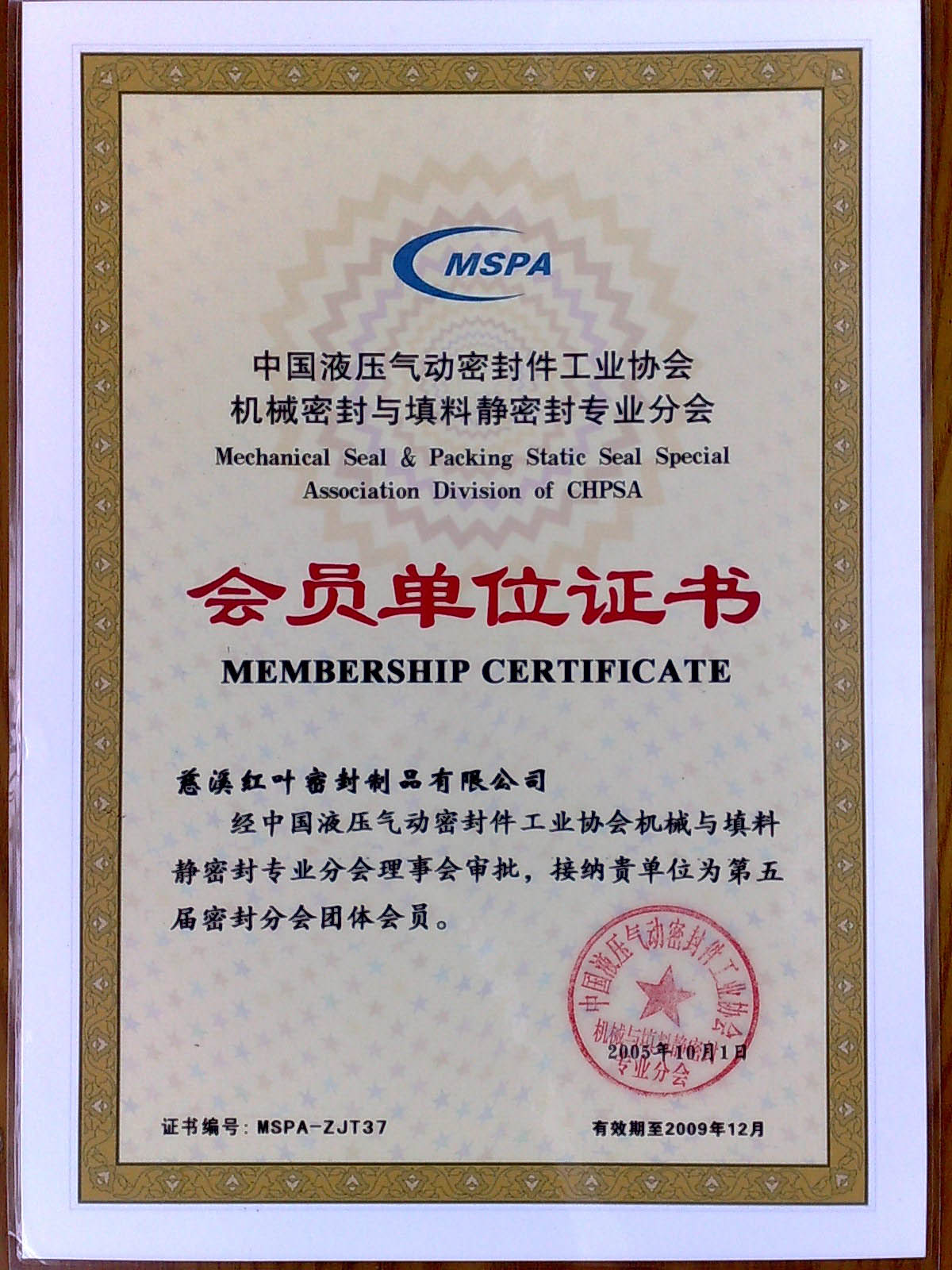 Mechanical Seal & Packing Static Seal Special Assoction Division of CHPSA