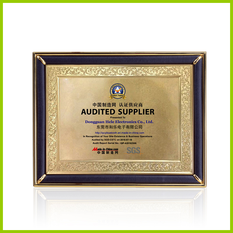 SGS Audit Report and Made-in-China Certificate