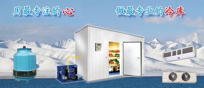 How to Choose a Refrigerated Walk-in Cold Room Storage Warehouse?