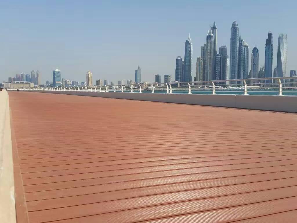 Dubai Palm Island Project
