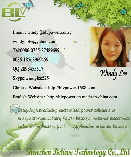 Contract details Windy Lee