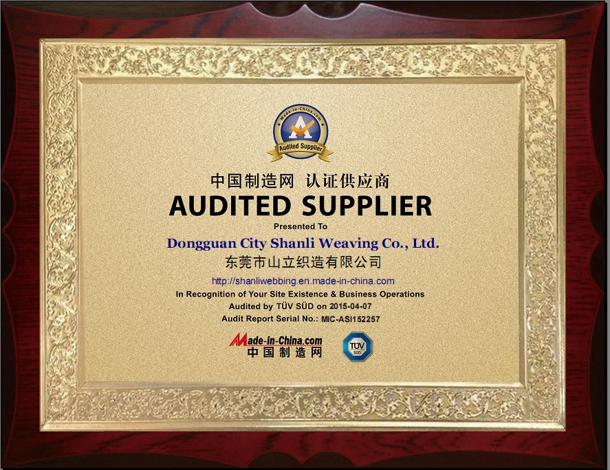 Audited Supplier by TUV & Made-in-China