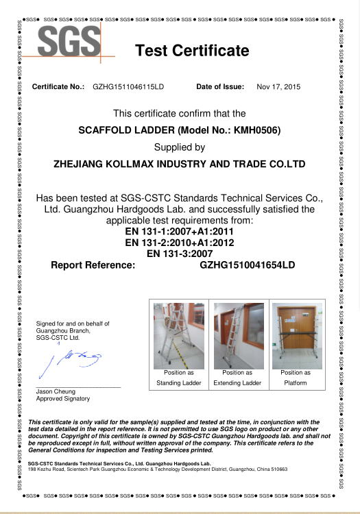 SGS certifiate for scaffold ladder