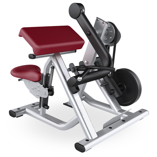 Plate Loaded Gym Equipment, Biceps Curl(Sf01)
