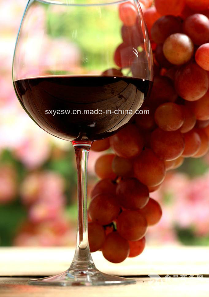 Natural Red Wine Extract with 30% Polyphenol