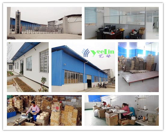 hanger factory profile yeelin