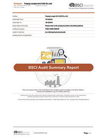 Congratulations! Our BSCI factory audit was successfully updated on Dec 19,2016
