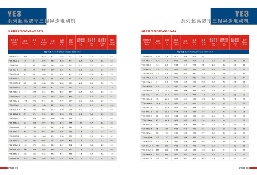 Leadrive Motor Catalog7