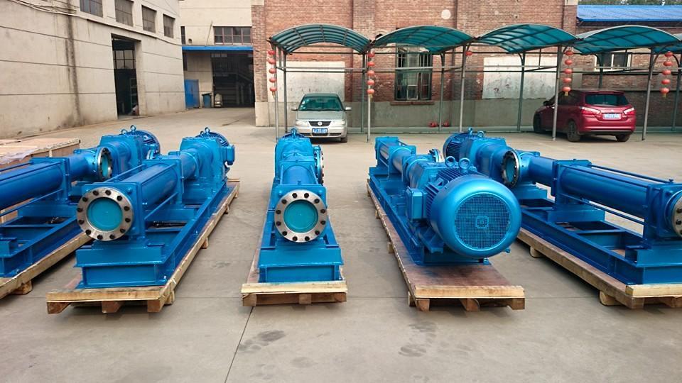 Export G mono screw pump to UAE