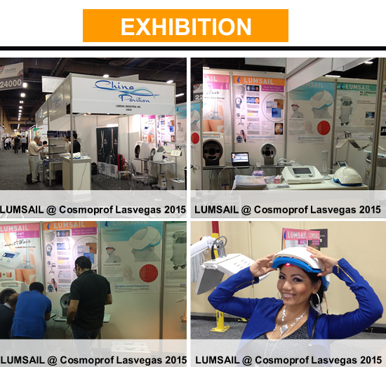 Exhibition in USA in 2015