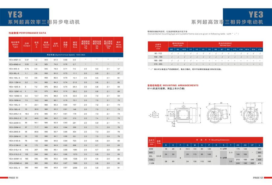 Leadrive Motor Catalog8